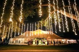 christmas lights to hang on outside tree christmas lights to hang on outside tree s christmas lights deer