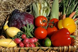 home vegetable gardening explodes reports latest survey growing