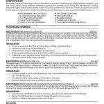 Word 2013 Resume Templates Microsoft Word Resume Template 2013 12 Resume Templates For