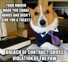 Contract Law Meme - image 584275 lawyer dog know your meme