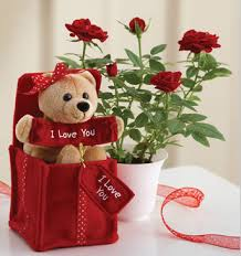Valentines Flowers - the use of flowers for the expression of love on valentine u0027s day