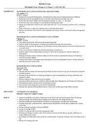 big data hadoop resume senior big data developer resume samples velvet jobs