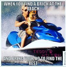 Miami Memes - 100 miami memes and jokes miami comedy