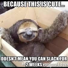Sloth Meme Generator - cute sloth meme generator mne vse pohuj