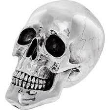 silver tone skull ornament tk maxx home decor paint colours