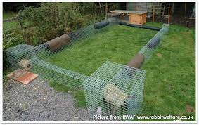 4ft Rabbit Hutch With Run What Size Hutch And Run Should I Get What Do Rabbits Live In