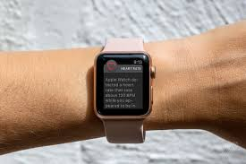 apple watch u0027s new heart rate features won u0027t work on the original