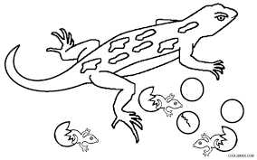 lizard colouring pages funycoloring