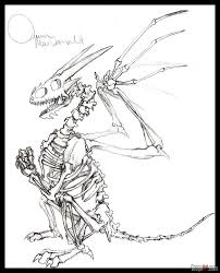 easy to draw dragon skeleton step by step dragons draw a dragon