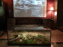 coffee table aquarium download terrarium coffee table home intercine