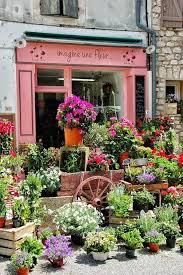 flower places 168 best flower shop images on flower shops