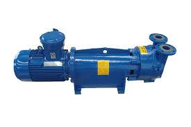 Water Ring Vaccum Pump 2fv6 Series Water Ring Vacuum Pump For Sale