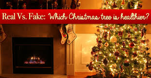 Artificial Decorative Trees For The Home Real Vs Fake Which Christmas Tree Is Healthier