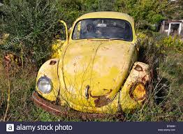 yellow volkswagen beetle royalty free old vw beetle car rusting in field zakynthos ionian islands