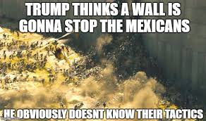 Landscaping Memes - image tagged in trump mexican possibly offending but probly not
