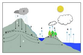 unit 1 hydrologic cycle