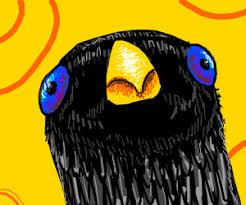 Crow Meme - want sum fuk crow meme