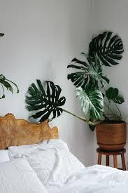 best plants for bedroom bedroom simple feng shui plants in bedroom room design plan