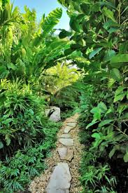 tropical garden ideas 437 best tropical landscaping ideas images on pinterest