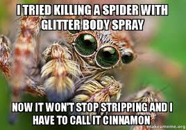 Kill Spider Meme - i tried killing a spider with glitter body spray now it won t stop