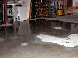 problems caused by a leaky basement in wyoming mi 49548