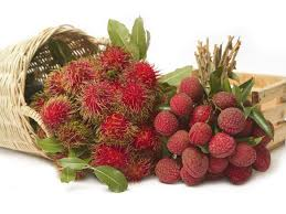 lychee fruit peeled nuts about lychees drweil com