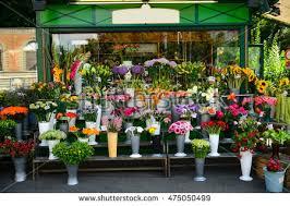flowers shop flower shop stock images royalty free images vectors