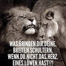 sprüche löwe sprüche löwe sprüche löwin und löwe zitate