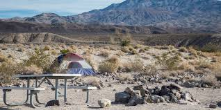 mojave desert native plants a guide to camping in the mojave desert outdoor project