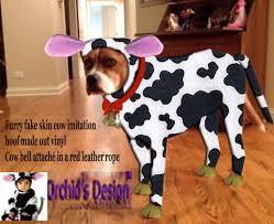 Extra Large Dog Costumes Halloween Halloween Dog Costumes Special Order Custom Dog Costume