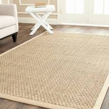 Pottery Barn Area Rugs Astonishing Picture Of Pottery Barn Rug Inspirational Pic