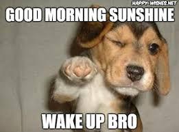 Good Morning Sunshine Meme - good morning sunshine meme happy wishes