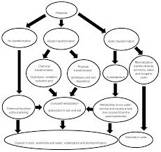 pesticide biodegradation mechanisms genetics and strategies to