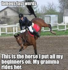 Meme Horse - famous last words funny horse meme