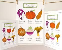 fruits and vegetables geraldine adams