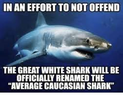 Shark Meme - in an effort to not offend the great white shark will be