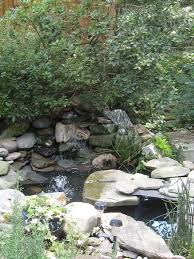 Backyard Fish Ponds by 169 Best Fish Stuff Images On Pinterest Fish Ponds Backyard