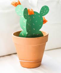 the pura vida bracelets blog paper cactus
