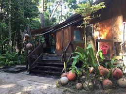 The Beach House Cape Tribulation by Where To Stay In Cape Tribulation Cape Trib Beach House Review