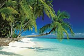 tropical island paradise maldives beach and sea palm trees on a tropical island paradise