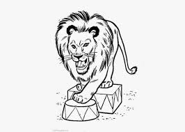 circus lion coloring pages free coloring pages coloring