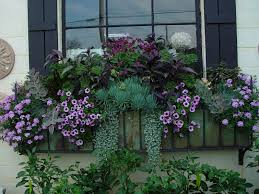 pictures balcony planter ideas best image libraries