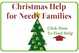 trees for needy families rainforest islands ferry