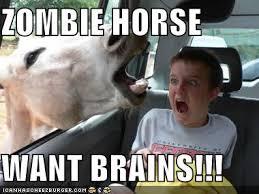 Meme Zombie - image meme zombie horse want brains jpg halo fanon fandom