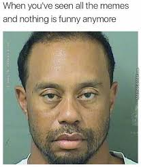 Tiger Woods Memes - tiger woods memes best collection of funny tiger woods pictures