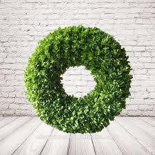 preserved boxwood wreath preserved boxwood wreath preserved boxwood wreath suppliers and