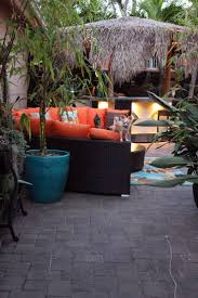 58 best tropical backyard ideas images on pinterest landscaping