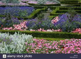 flower garden in holland park london england stock photo royalty
