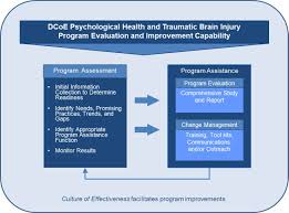 psychological health and traumatic brain injury program evaluation