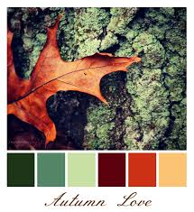 14 best colors images on pinterest color pallets colors and